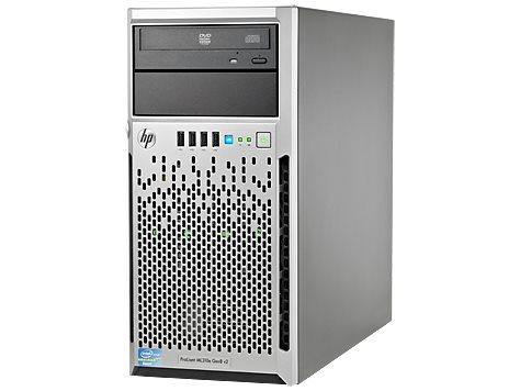 Se utilizó un servidor HP ML310e